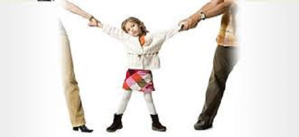 Monroe county child custody (1)